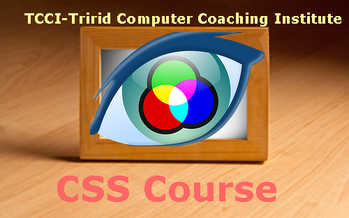 CSS Course in Ahmedabad.png